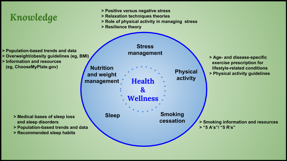 Promoting Health and Wellness Through Physical Therapy
