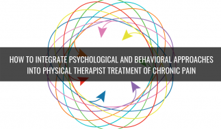 How to Integrate Psychological and Behavioral Approaches into Physical Therapist Treatment of Chronic Pain