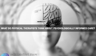 What Do Physical Therapists Think About Psychologically Informed Care?