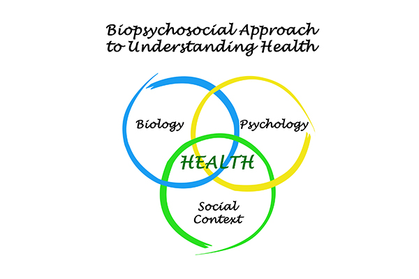 HPP 178 | Biopsychosocial Intervention
