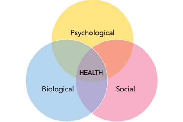 HPP 218   Biopsychosocial Model